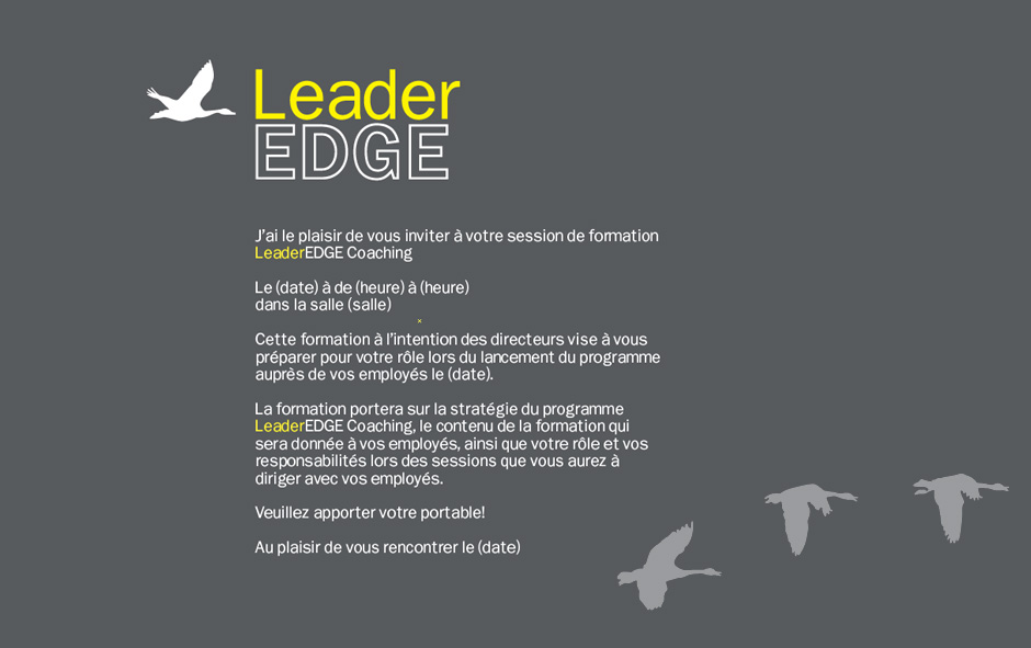 pages-jaunes-leader-edge-02b